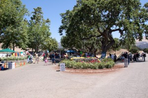 Neverland-Ranch-Michael-Jackson-Memorial-15