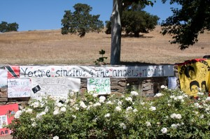 Neverland-Ranch-Michael-Jackson-Memorial-18
