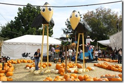 Mr-Bones-Pumpkin-Patch-1