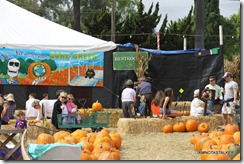 Mr-Bones-Pumpkin-Patch-4