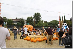 Mr-Bones-Pumpkin-Patch-8