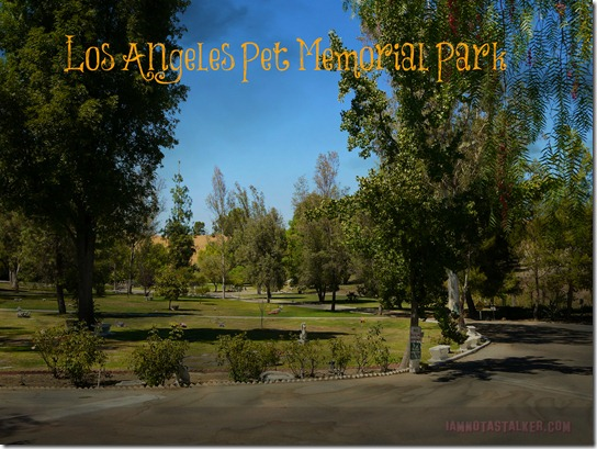 Los Angeles Pet Memorial Park (32 of 33)