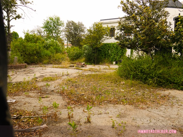 Liza Minnelli's abandoned house (12 of 22)