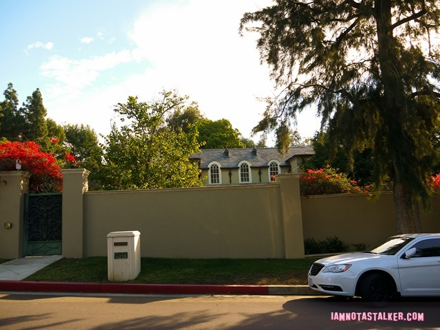 License to Drive Party House (8 of 12)