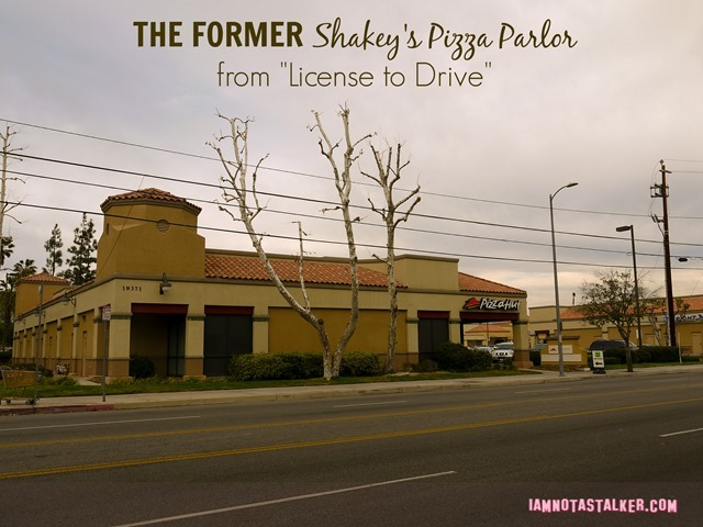 Shakey's License to Drive (9 of 10)