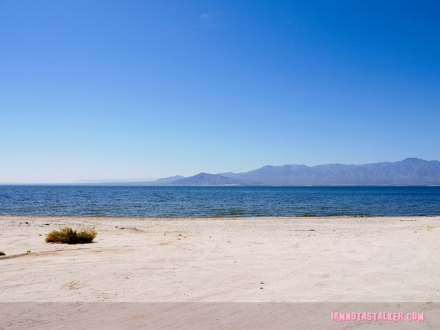 The Salton Sea (17 of 30)