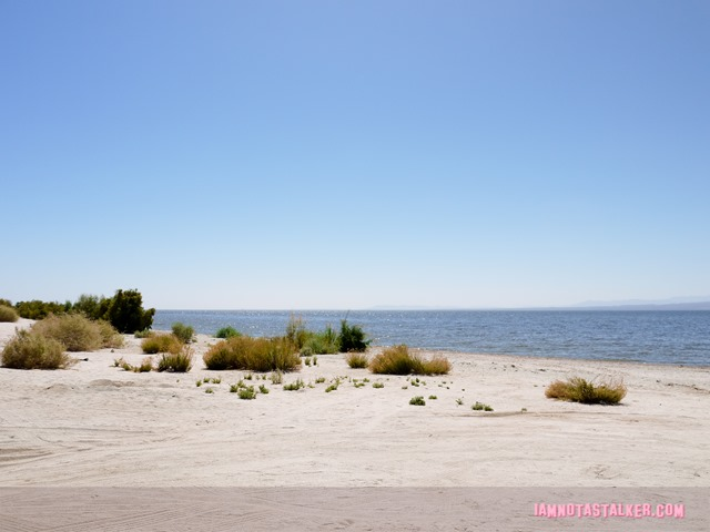 The Salton Sea (18 of 30)