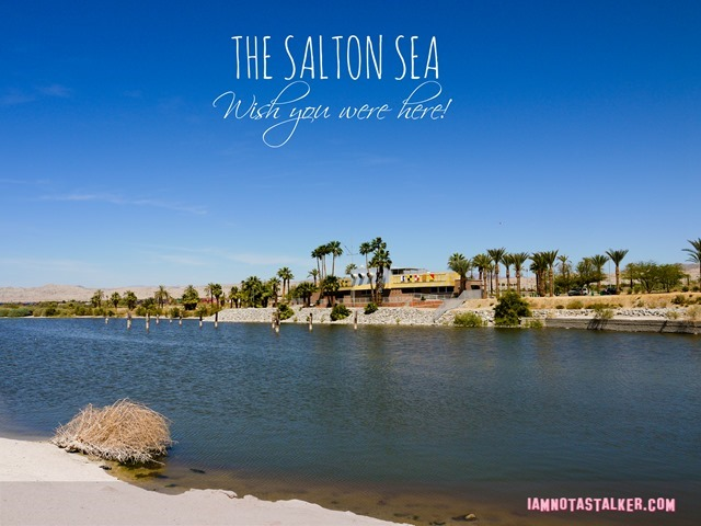 The Salton Sea 3 (15 of 30) (2)