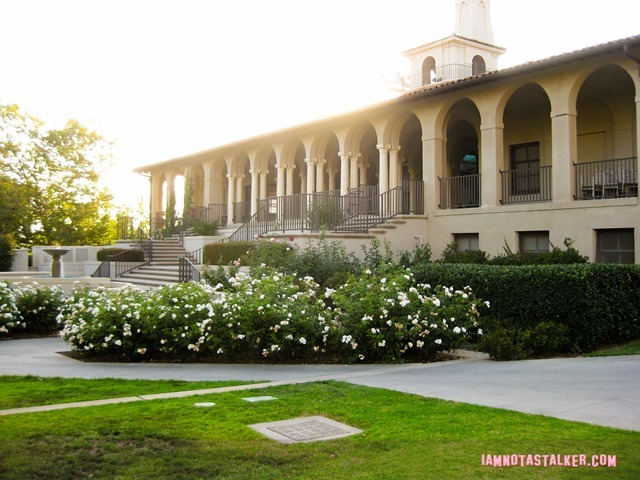 Clueless Occidental College (3 of 23)