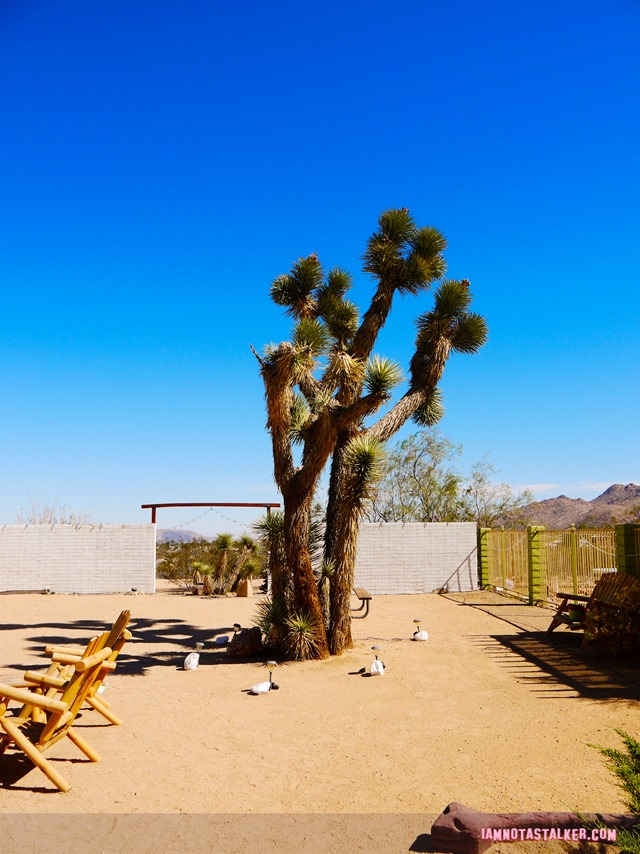 Joshua Tree Inn Gram Parsons (5 of 19)
