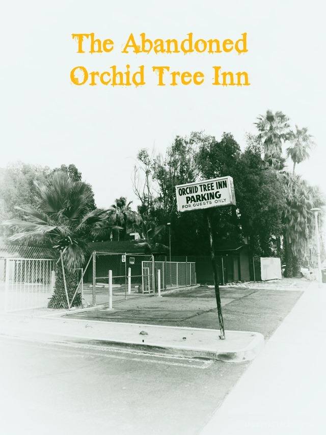 The Orchid Tree Inn Palm Springs (40 of 49)