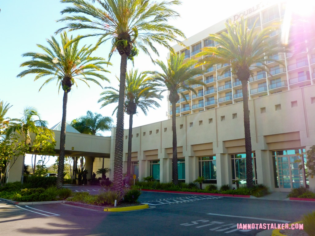 Pretty Doubletree Hotel In Palm Beach Gardens Pictures Inspiration ...