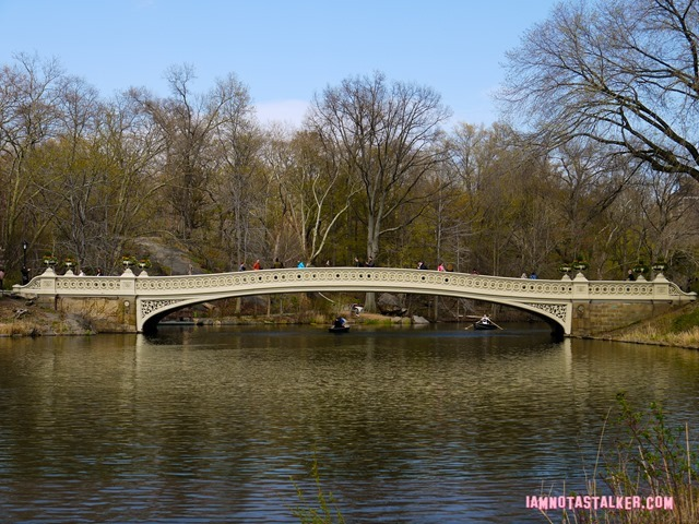 Bow Bridge from Glee-1140153