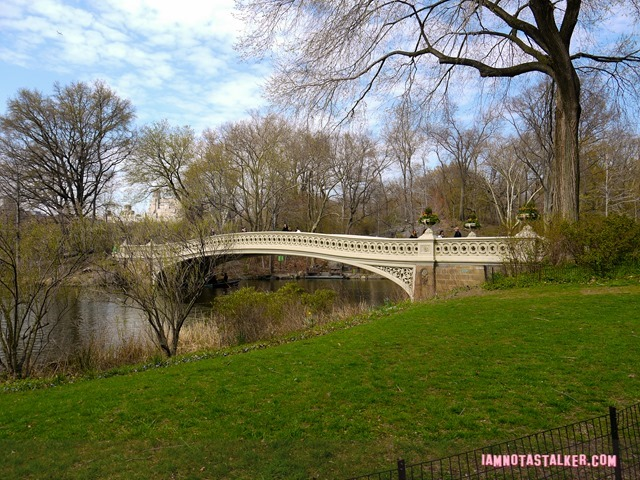 Bow Bridge from Glee-1140158