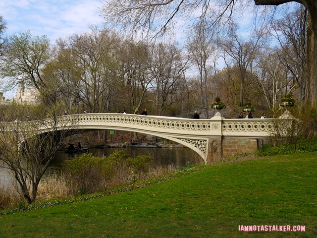 Bow Bridge from Glee-1140159