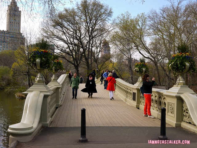 Bow Bridge from Glee-1140173