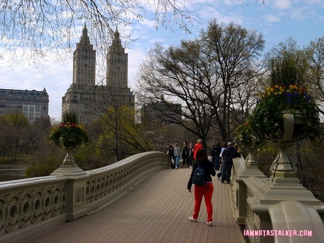 Bow Bridge from Glee-1140175