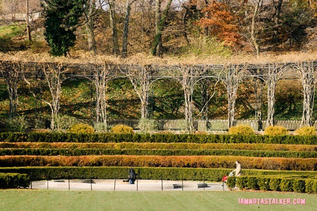 The Conservatory Garden from The Girl on the Train-0493