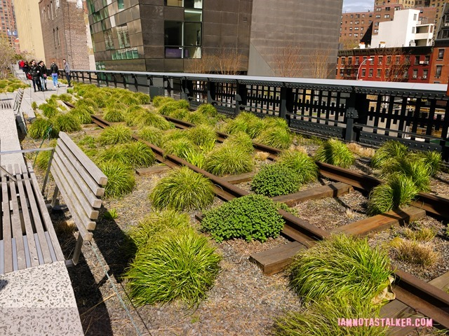 High Line from The Real Housewives of BH-1140485
