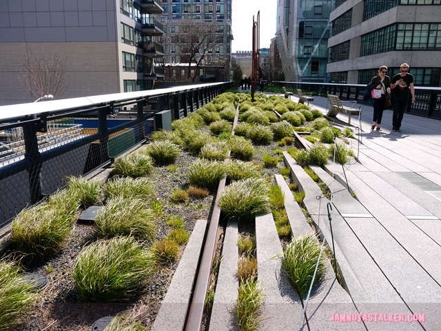 High Line from The Real Housewives of BH-1140491
