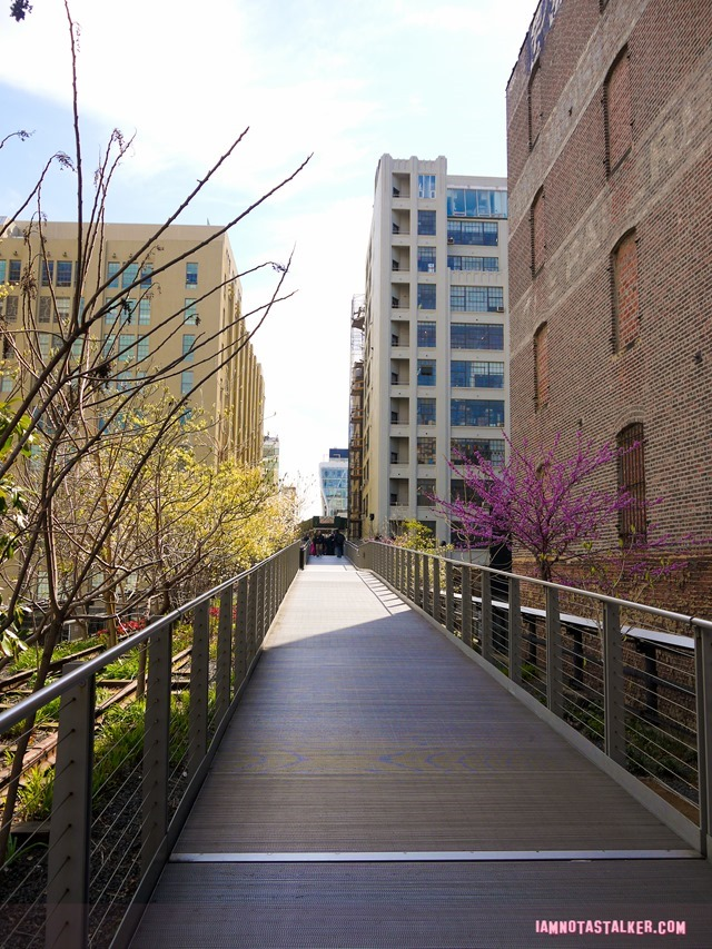 High Line from The Real Housewives of BH-1140495