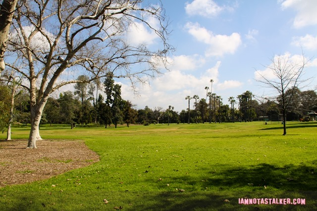 Lacy Park from Say Anything-6998