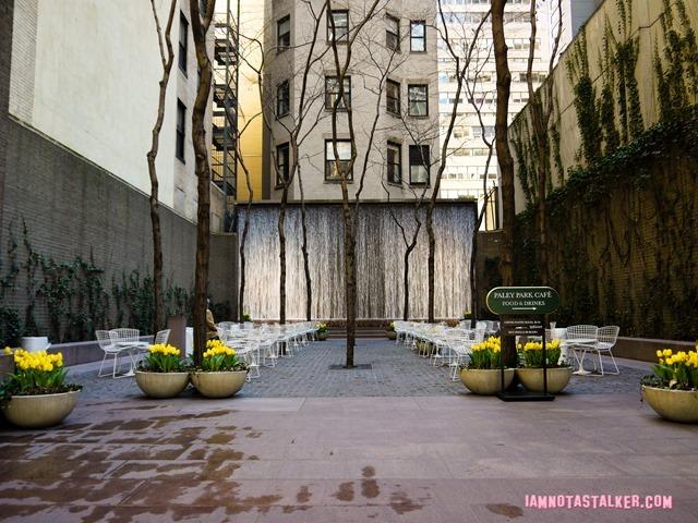 New York's Paley Park-1130664