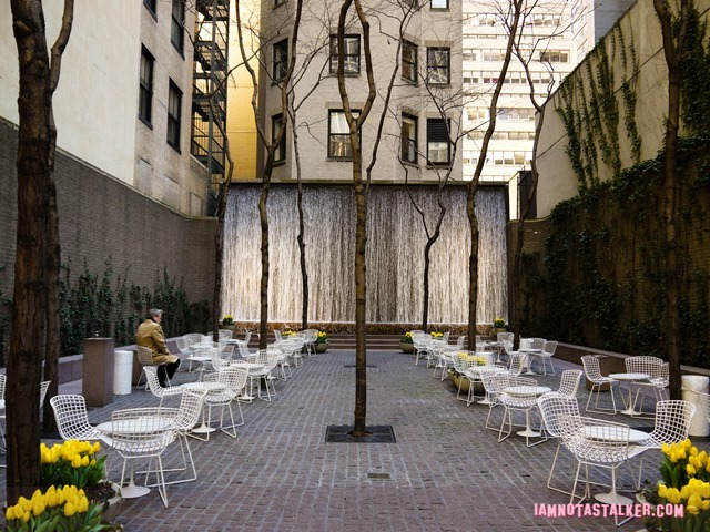 New York's Paley Park-1130667