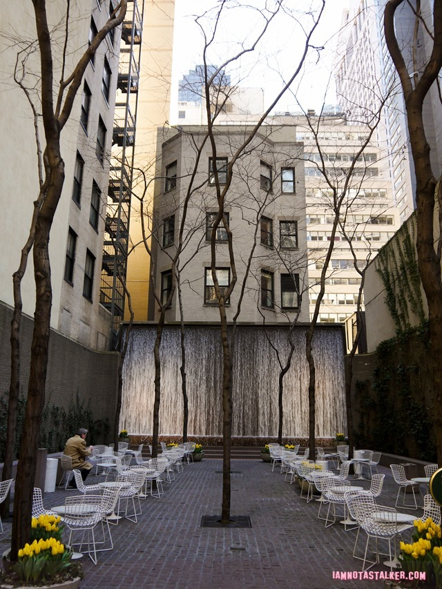 New York's Paley Park-1130679