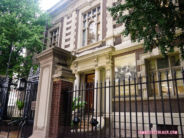 The Mutter Museum-1180351