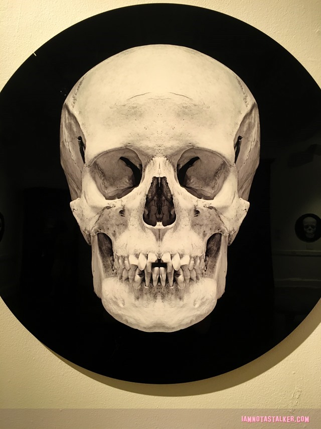 The Mutter Museum-5756